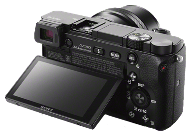 Sony a6000: Great budget mirrorless camera for travel and vacation pics.