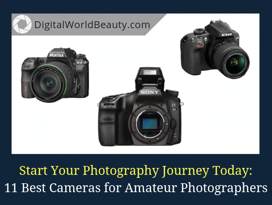 11 Best Cameras for Amateur Photographers in 2021 (Definitive List)