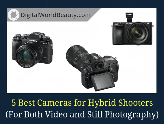 5 Best Digital Cameras for Hybrid Shooters Right Now (For Both Video and Still Photography)
