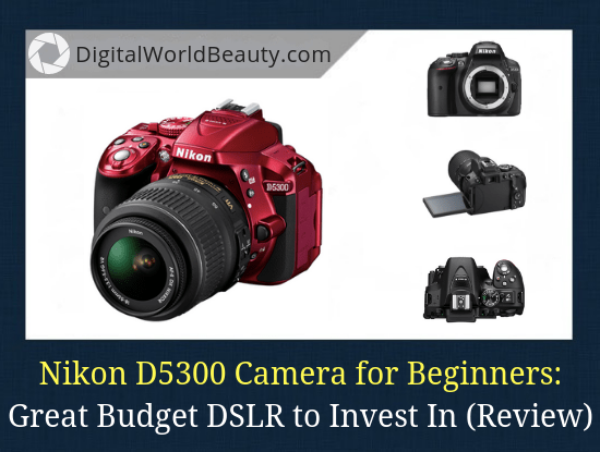 Nikon D5300 Review 2019: An Awesome Budget DSLR for Beginners (Under $500)