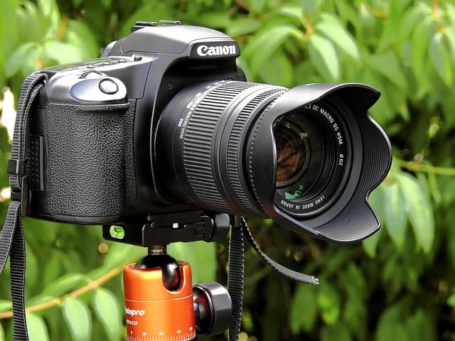 Photography tips for beginners. Live View in DSLR cameras, what is it, when and how to use live view for better focus and sharp photos