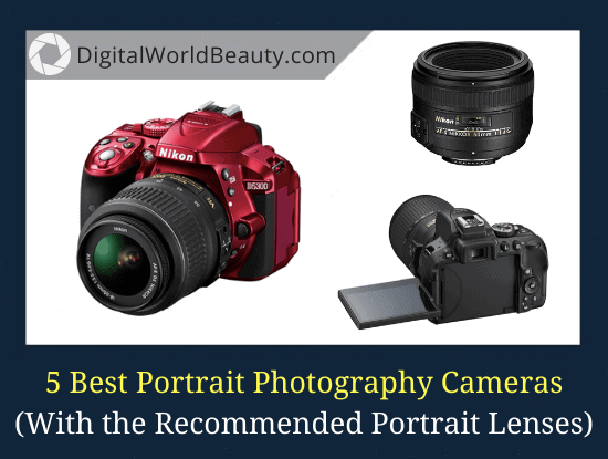 5 Best Cameras for Portrait Photography 2020