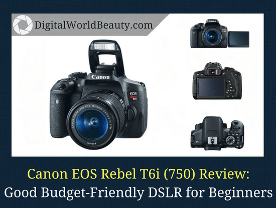Canon Rebel T6i Review 2021: Great Budget-Friendly DSLR Camera For Beginners (Under $1000)