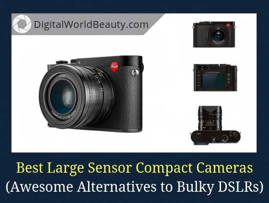 Great DSLR Alternatives: The List of Top 5 Best Large Sensor Compact Cameras in 2019 for Travel and Street Photography (Reviews)