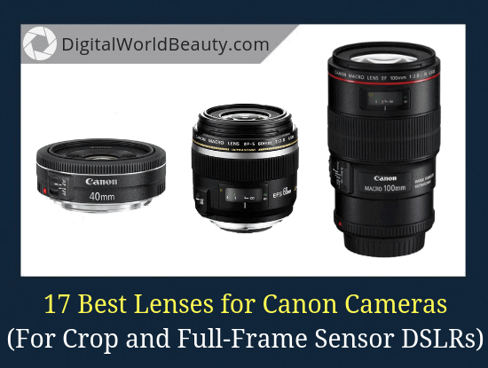 17 Best Lenses for Canon Cameras in 2019: For Both Crop (APS-C) and Full-Frame (FX) Sensor DSLRs.