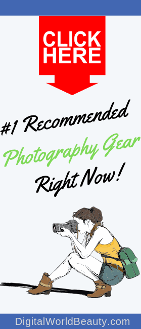 Best Gear for Beginner Photographers in 2019: Cameras, Lenses and Other Photography Accessories.
