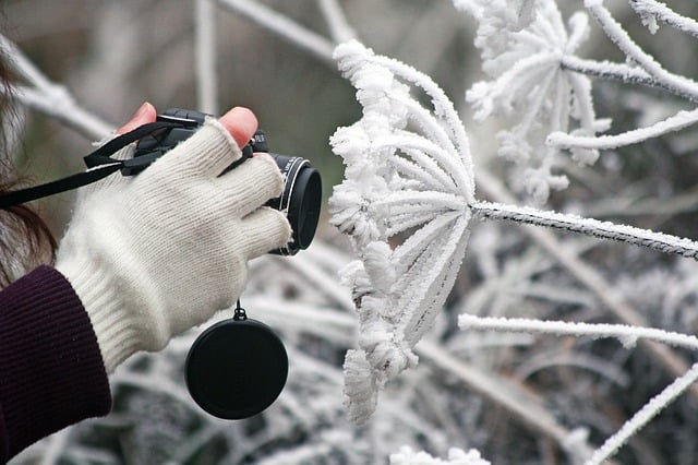 Learn How to Protect Your Gear in the Cold With These Tips