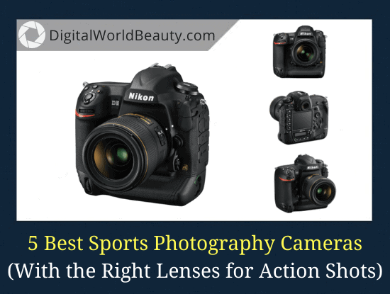5 Best Cameras for Sports Photography (2021)
