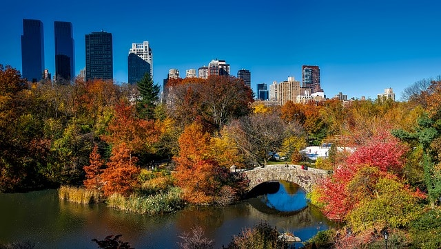 Central Park is one of the most photogenic places in New York City (NYC)