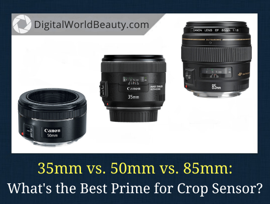 35mm vs 50mm vs 85mm: What is the Best Prime for a Crop Sensor?