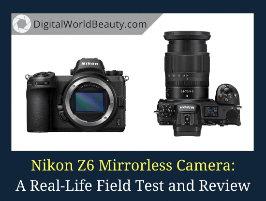 Nikon Z6 Review: A Real-Life Field Test