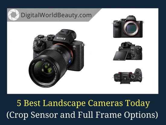 5 Best Landscape Cameras in 2021