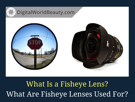 What Is a Fisheye Lens? What Are Fisheye Lenses Used For?