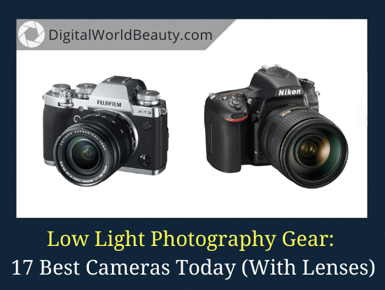 17 Best Cameras for Low Light Photography in 2020 (With the Lenses)