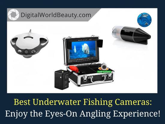 Best Underwater Fishing Cameras 2020