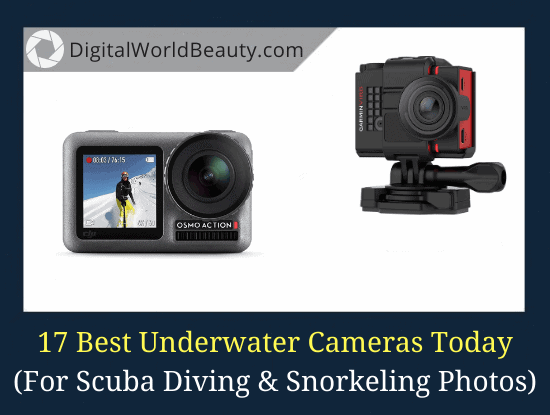 17 Best Cameras for Underwater Photography (Diving and Snorkeling)