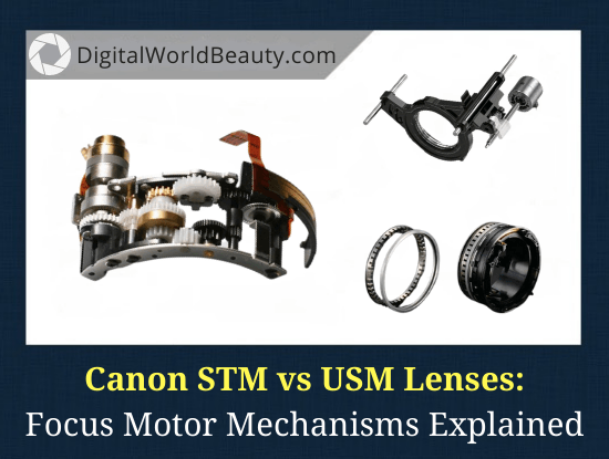 Canon STM vs USM Lens - What Is the Difference?
