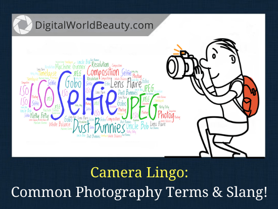 Camera Lingo: Photography Terms and Slang Explained!