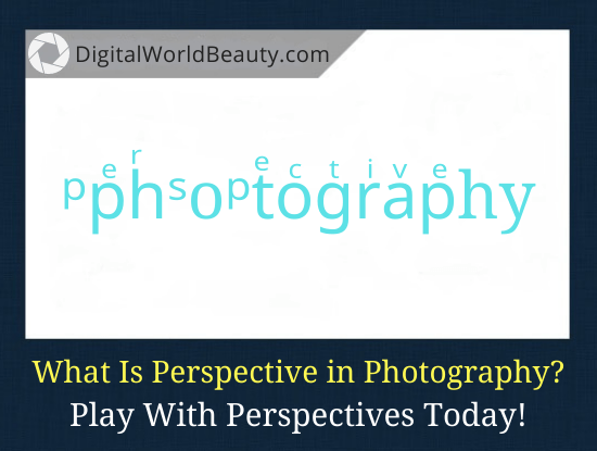 What Is Perspective in Photography (With Examples)